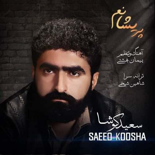 دانلود آهنگ پریشانم از سعید کوشا