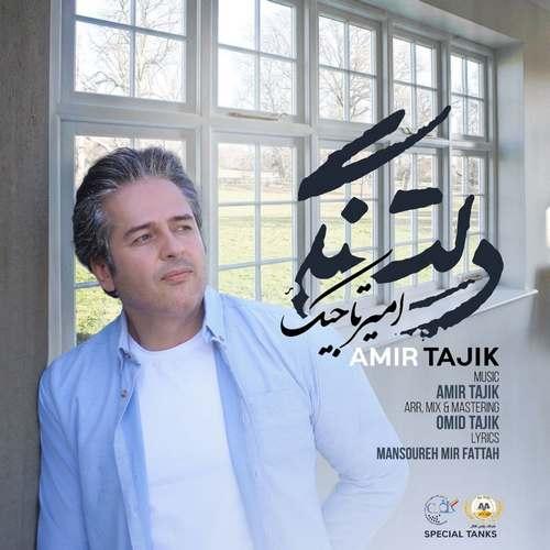 دانلود آهنگ دلتنگی از امیر تاجیک
