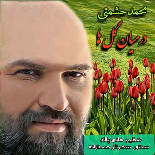 دانلود آهنگ در میان گلها از محمد حشمتی