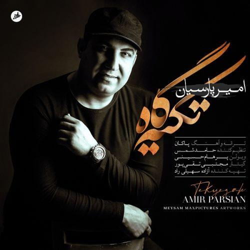 دانلود آهنگ تکیه گاه از امیر پارسیان