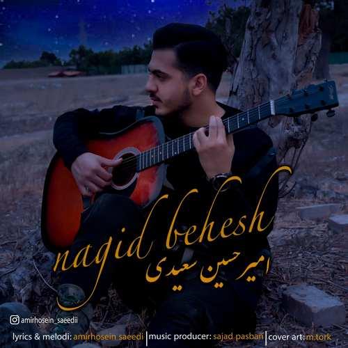 دانلود آهنگ نگید بهش از امیرحسین سعیدی